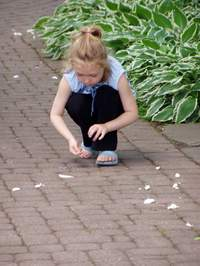 Little_girl_playing_with_petals